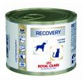 Royal Canin 處方糧 - Recovery 貓/犬隻康復支援營養濕糧195g (貓/狗)