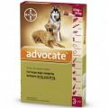 Advocate (杜絕跳蚤,心絲蟲和體內寄生蟲)(10至25公斤的狗) (*要訂貨, 約一星期)