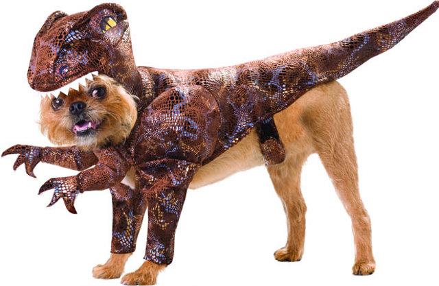 dog-dinosaur.jpg