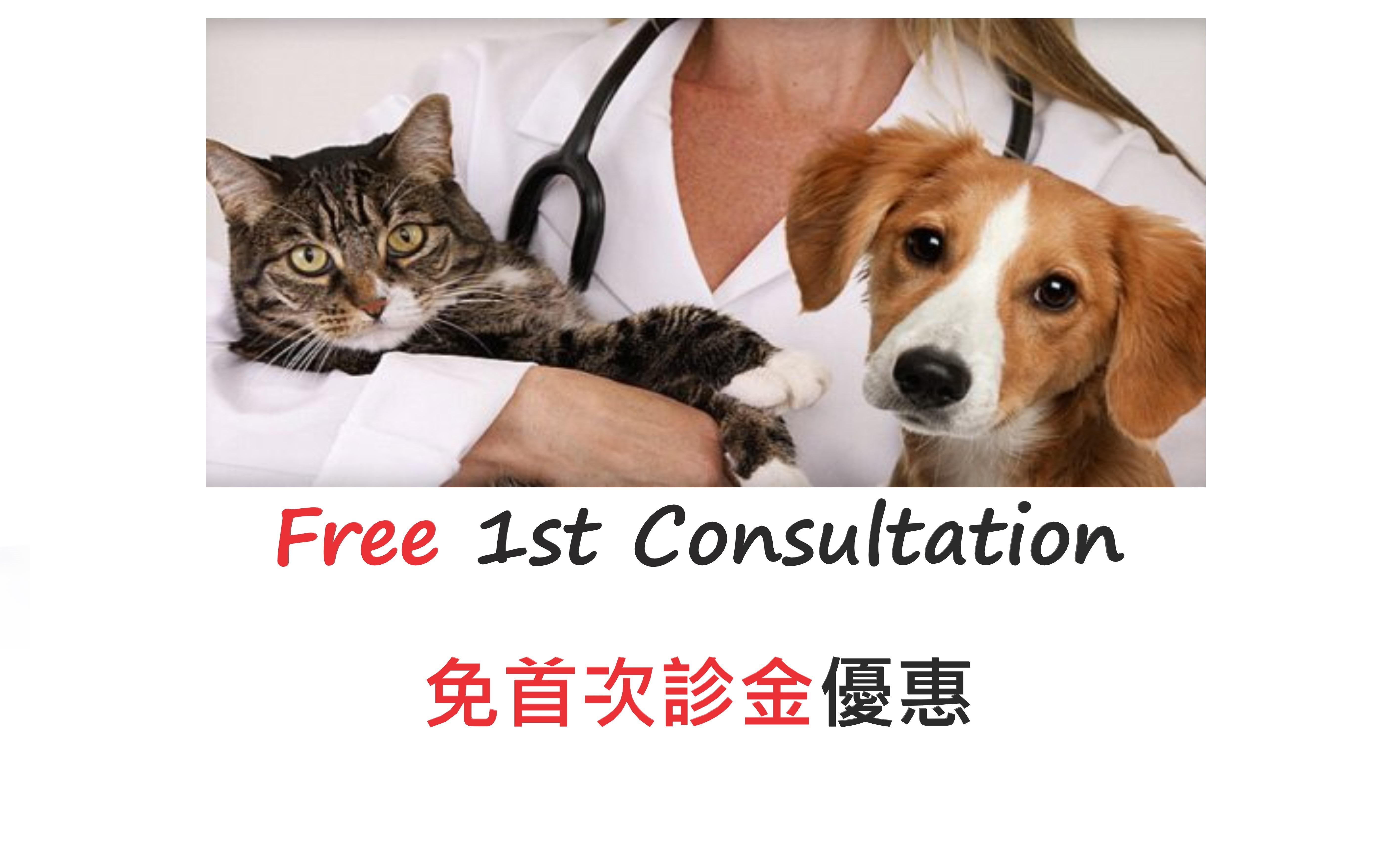 free-consultation-homepage.jpg