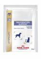 Royal Canin 處方糧 - Rehydration Support 貓/犬隻電解質水29g (貓/狗)